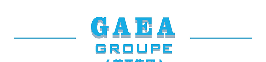中国盖亚建筑有限公司招聘预算员_建筑英才网